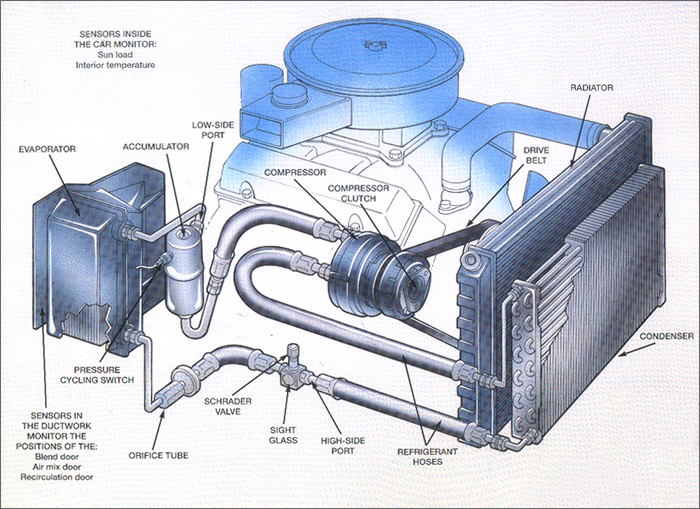 Acdiagram on 1978 Malibu Engine Diagram